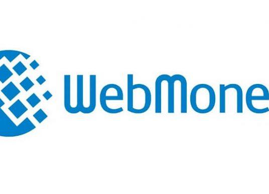 Webmoney İncelemesi – Webmoney Nedir?