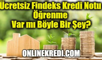 Ücretsiz Findeks Kredi Notu Öğrenme - Var mı Böyle Bir Şey?