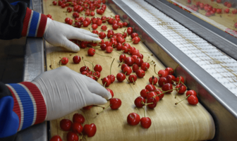 Türkiye, Asya'ya tarımsal ihracatı çeşitlendirme çabalarını artırıyor